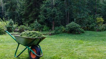 Everything You Need To Know About Choosing A Large, Medium, Or Small Garden Carts